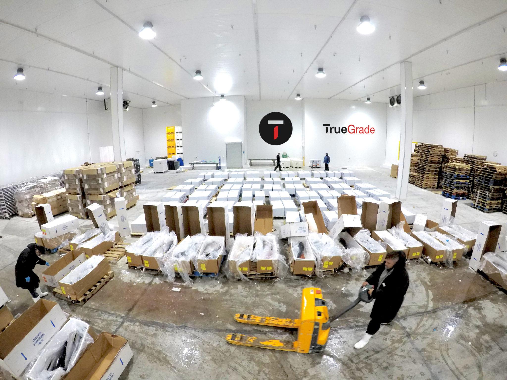 True Grade Consolidation & Distribution Services