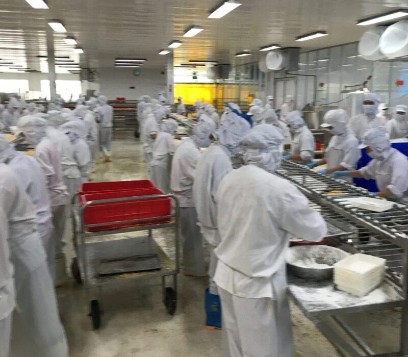 True Grade Plant in Asia