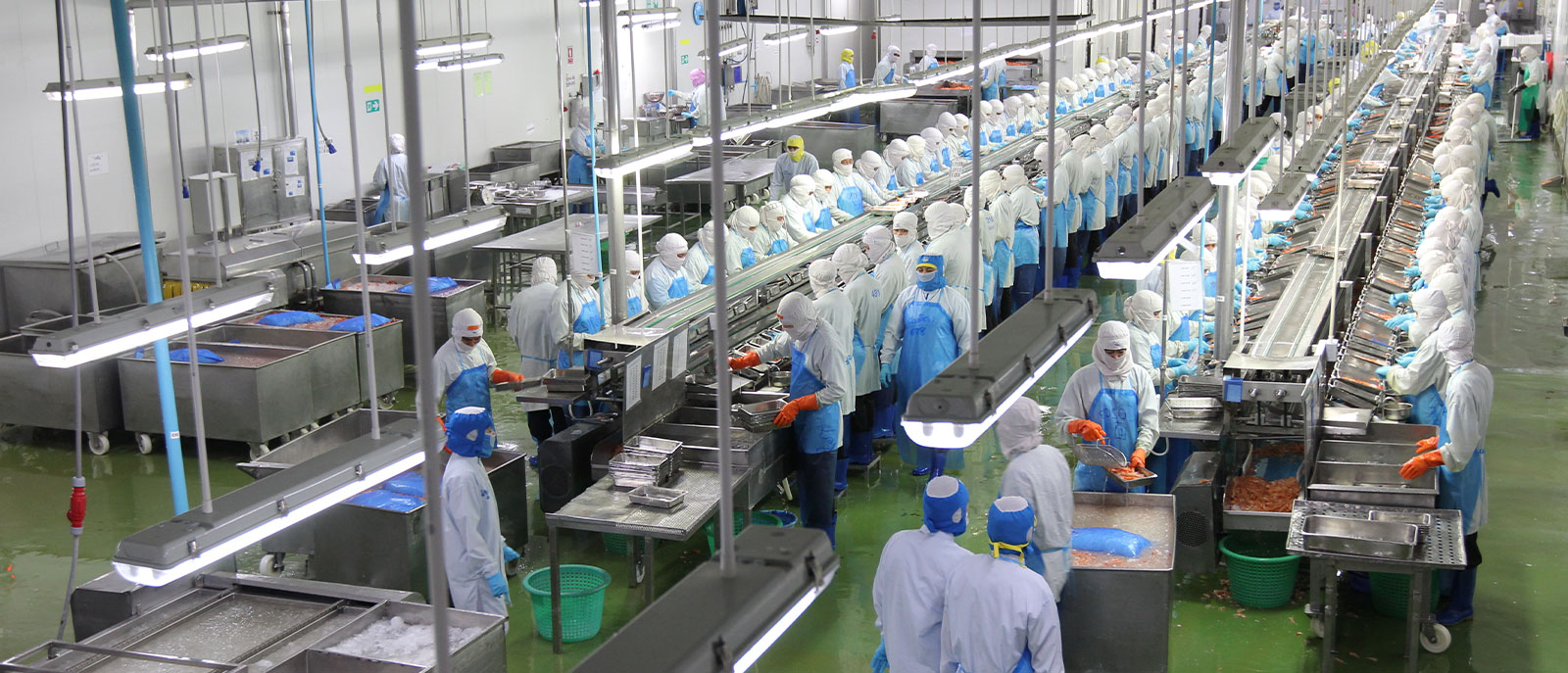 True-Grade-Plant-Workers